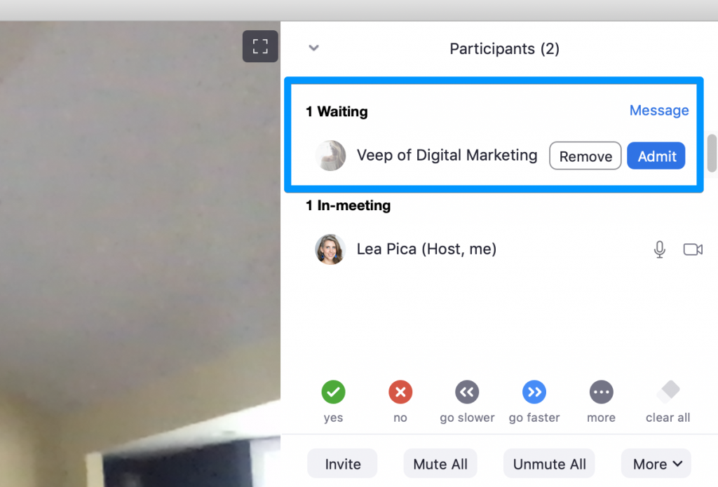 Zoom Tips for Online Presenting - Admit from waiting room